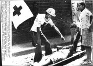 Red Cross assistance in Nicaragua