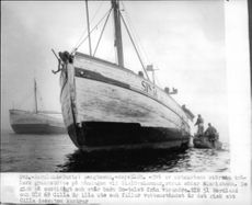 Two of the east coast's largest trawlers, ITS 51 and ITS 69 Nordland Priscilla, which had run aground at Gislövshammar.