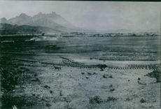 Soldiers gathered in the field during the Russian-Japanese war, 1905.