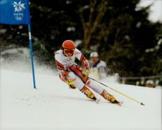 Alexandra Meissnitzer from Austria drove home Olympic silver in Grand Slam.