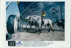 Field competition rider Dag Albert cools off his horse Have a nice day in the shower tent.