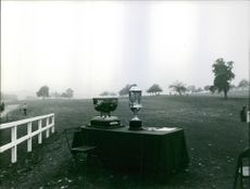 Trophies on a table in a wide yard.