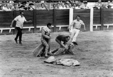 Some people are trying to rescue injured matador El Cordobés from a bullring
