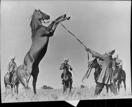 The Russian cossacks are known for their good ability to handle horses.