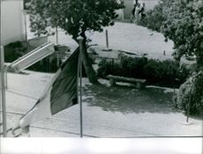 Vintage photo of a flag waving on pole in Bizerte. Photo taken in August 1963.