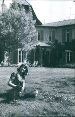 Xavier relaxing in lawn with puppy. 1964