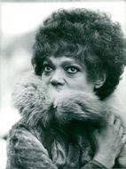 Eartha Kitt with the fur wrapped around the neck