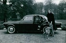 Princess Beatrix of the Netherlands together with her dog outside her car.