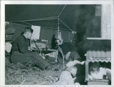 Soldiers having discussion together while lying in tent houses during wartime.