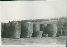View of wooden baskets in ground.