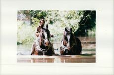Skire horses Timothy and Jimmy with Stephen Riddiford-Smith.