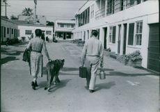 Man and woman walking with lion.