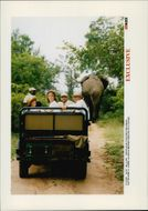 Andre Agassi on safari in South Africa together with his wife Brooke Shields.