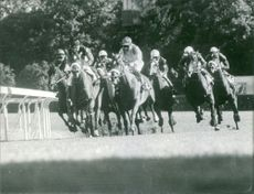 Yves Saint-Martin riding his horse in a horse racing competition.