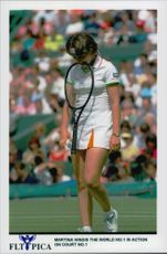 Martina Hingis attends the Wimbledon tournament.