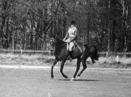 Princess Anne riding her horse,