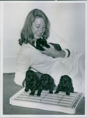 Shirley Abicair holding Sarah, the other three puppies, Hallelujah, Aloibiades and Jamie get acquainted with her zither. 1958.
