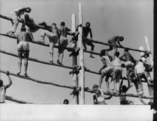 People climbing on the wooden structure.