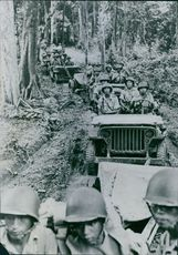 Soldiers passing by the forest in vehicles.