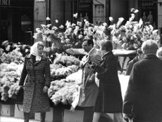 Easter at the Haymarket twigs with feathers sold on the market