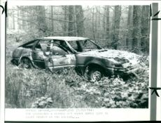 The rover which is believed to have beem set on fire in the forest.