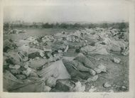 View of soldiers dead bodies are lying in ground during first world war, 1915.