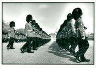 Trooping the Colour (coldstream guards)