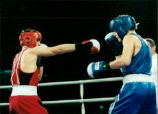 Roger Pettersson boxer wins over the Russian Vladimir Stepanets