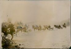 1904  A vintage photo of group men moving with their animal drawn carriers.
