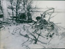 Soldier at his position during wartime.
