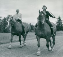 The Swedish Games in Radio. Ulla and Hyland make first steps on the horse.