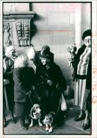 Belgian ladies wait and have their dogs blessed.