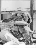 A lady Pampering a lion cup, 1966.