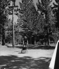 Rita Hayworth wheeling her and Aly khan's daughter Yasmin along a wooded lane near Nevada.